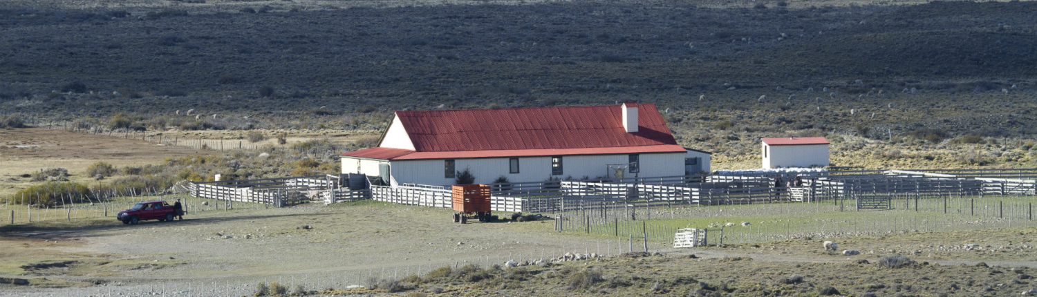 Sheep Farm in Patagonia Fuhrmann Organic Wool