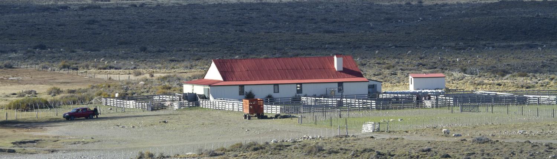 Sheep Farm in Patagonia Fuhrmann Organic Wool