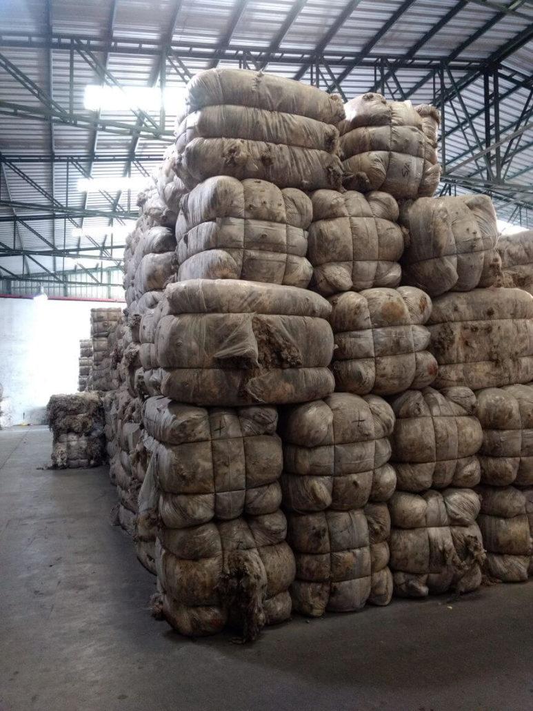 Greasy Wool Bales