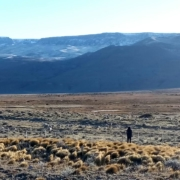 Markaware visit to the grasslands of Patagonia