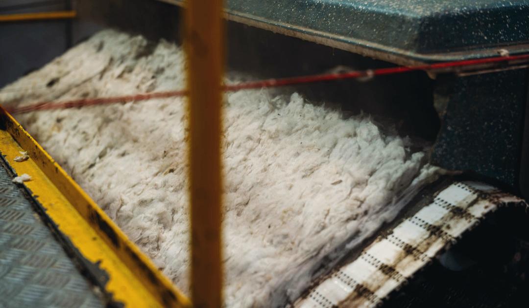 Fuhrmann Argentina Organic Wool Mill 3