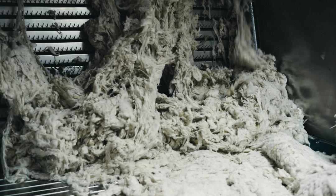 Fuhrmann Argentina Organic Wool Mill 4