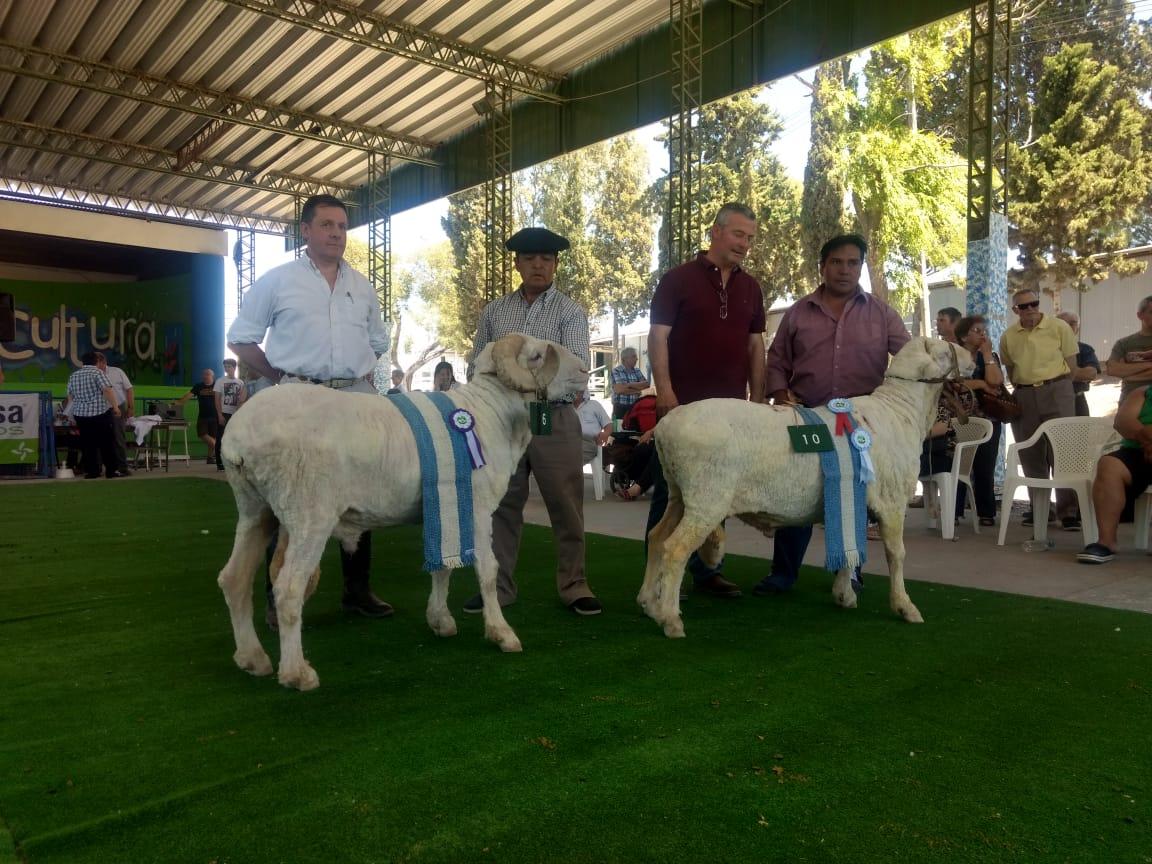 La Rural Trelew 2018